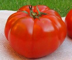 Sopa de tomate con queso Idiazabal ahumado