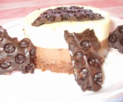 BASE DE  GALLETAS (TARTA 3 CHOCOLATES)