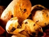 Masa de pan rápida