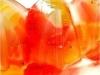 Timbal de frutas con agar-agar